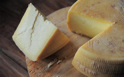 Il formaggio pecorino